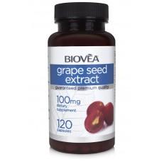 GRAPE SEED EXTRACT 100mg - мощен антиоксидант, забавя стареенето - срок на годност - 30.10.2020г.