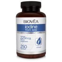 IODINE FROM KELP 225mcg 250 Capsules - за здравето на щитовидната жлеза и хипофизата
