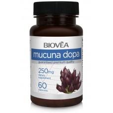 MUCUNA DOPA 250mg 60 капсули - подобрява енергийните нива и настроението, повишава  мозъчната функция и либидото
