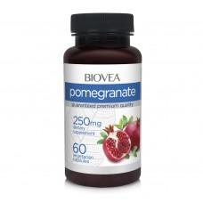 POMEGRANATE 250mg 60 Capsules - антиоксидант, антибактериални свойства - срок на годност - 30.08.2020